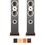 Acoustic Kingdom GIGA FS I (клен) АС напольная двухполосн, 2x60W, 8 Оmh, динамики карбоновые 2х5,25'