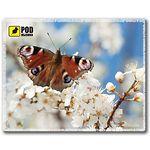 mouse pad (коврик) Podmyshku Весна-Бабочка размер (190х240 мм)