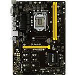 Biostar TB250-BTC PRO (Altcoin mining hardware)