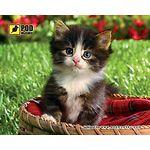 mouse pad (коврик) Podmyshku Котенок в корзине размер (190х240 мм)